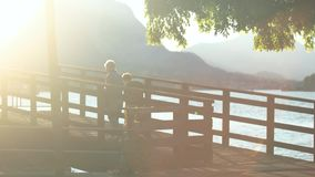 Couple of seniors near lake. People walking outdoors, sunny day stock video footage