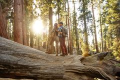 Couple in Sequoia national park in California, USA. Couple in Sequoia national park in California. USA stock image