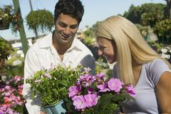 Couple Shopping for flowers in plant nursery Royalty Free Stock Image