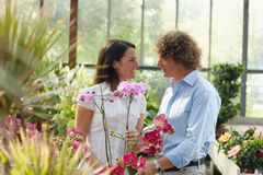 Couple shopping in garden center Stock Image