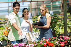Couple shopping in greenhouse Royalty Free Stock Photography