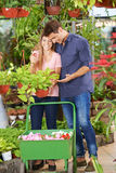 Couple shopping in a nursery shop Stock Image
