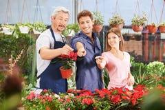 Couple showing salesman plants in nursery shop Stock Photo