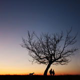 Couple silhouette in the sunset light Royalty Free Stock Image