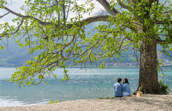 Couple sit under big tree on beach looking at each other Stock Photos