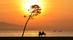 Couple sitting on a bench under sunset Royalty Free Stock Images
