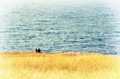 Couple sitting on grass near sea Royalty Free Stock Images