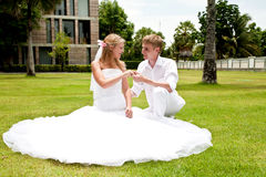 Couple sitting on grass in a tropical park stock image