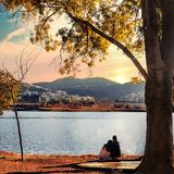 Weekend in Tirana at the lake. Couple sitting on lake shore under a tree looking at sunset view over the hills. Autumn nature Royalty Free Stock Photo