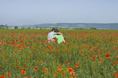 Couple sitting on meadow with poppies Royalty Free Stock Image