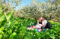 Couple sitting under bloomy tree. Beautiful couple sitting on blanket under the bloomy apple tree, smiling and hugging. Green grass around royalty free stock image