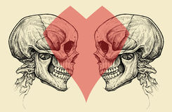Couple Skulls and Heart Symbol vector. Stock Images