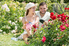 Couple smiling at summer resident Royalty Free Stock Image