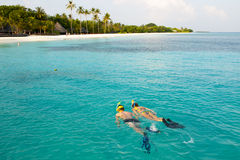 Couple snorkel in crystal water in Maldives. Caucasian couple of tourists snorkel in crystal turquoise water near Maldives Island Stock Photos