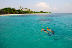 Couple snorkel in crystal water in Maldives. Caucasian couple of tourists snorkel in crystal turquoise water near Maldives Island Royalty Free Stock Images