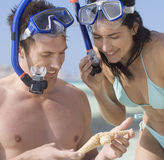 A couple snorkeling Stock Images