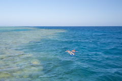Couple snorkeling on tropical reef Royalty Free Stock Photos