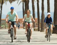 Couple with son on bicycles Stock Image