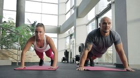 The couple of sportsmen does the push-ups on the mats in big bright luxury gym. The lady wears white sport top and pink trousers and the man with the tttoo on stock footage