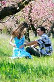 Couple in spring garden Royalty Free Stock Image