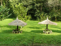 Couple of square wooden bench under straw parasol Stock Photos