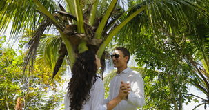Couple Stand Under Palm Tree Kiss Talking In Tropical Garden , Happy Man And Woman Outdoors. Slow Motion 60 stock video footage