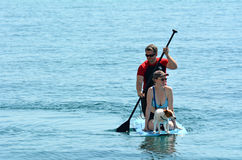 Couple on stand up paddling Stock Photos