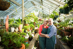 Couple standing amidst plants at greenhouse Stock Photos