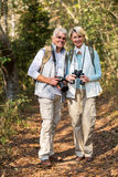 Couple standing forest. Beautiful old couple standing in the forest royalty free stock images