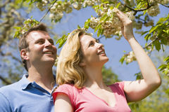 Couple standing outdoors holding blossom smiling Royalty Free Stock Images