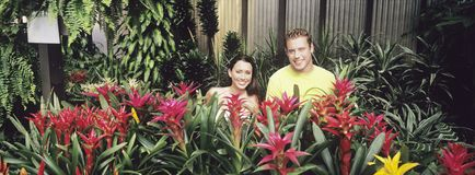 Couple standing among plants in plant nursery portrait Stock Photos