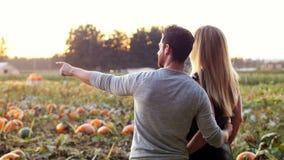Couple standing in a pumpkin field stock video