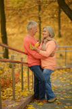 Couple standing on stairs. Elderly couple standing on stairs in autumnal park Stock Photos