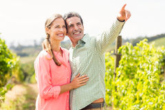 Couple standing in vineyard and pointing at nature. On a sunny day Stock Photo