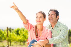Couple standing in vineyard and pointing at nature Stock Images
