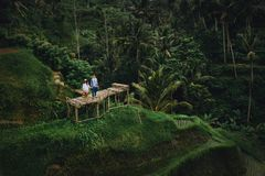 Couple standing on wooden bridge near rice terraces in Bali Indonesia. Holding hands. Romantic mood. Tropical vacation royalty free stock photos