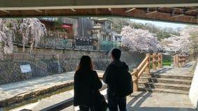 Enjoying cherry blossoms in Arima Onsen, Japan
