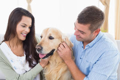 Couple stroking dog at home. Happy couple stroking dog at home Royalty Free Stock Photos