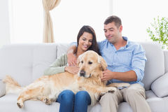 Couple stroking dog while sitting on sofa Stock Photos