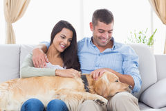 Couple stroking Golden Retriever on sofa Royalty Free Stock Image