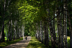 A Couple Stroll at Tolstoy Country Estate royalty free stock photos