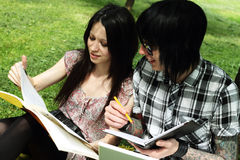 Couple studying outdoors. Couple of young students studying outdoors with laptop and books Royalty Free Stock Photos