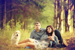 Couple at sunny forest Stock Photo