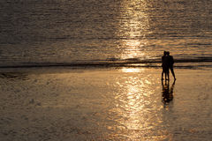 Couple at sunset. Royalty Free Stock Image