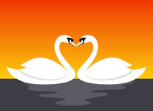 Couple swan lovers face to face, vector illustration Stock Photography