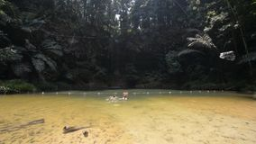 Couple swimming into multicolored natural pool with scenic waterfall in the rainforest of Lambir Hills National Park, Borneo stock video