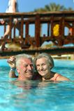 Couple swimming in pool Stock Images