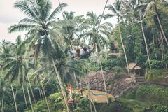 Couple swings in the deep jungle of Bali island. Couple swings in the deep jungle of Bali island, Indonesia Royalty Free Stock Photos
