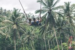 Couple swings in the deep jungle of Bali island. Couple swings in the deep jungle Royalty Free Stock Photos