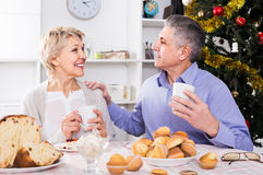 Couple at the table celebrating Christmas and New Year at home. Positive mature couple at the table celebrating Christmas and New Year at home royalty free stock photography